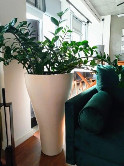 duża donica do salonu, donica bazaltowa, biała donica